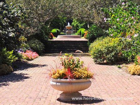 Kingwood Gardens_0009
