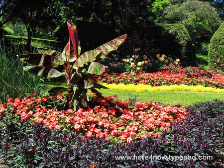 Kingwood Gardens_0032