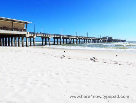 Gulf Shores_0019