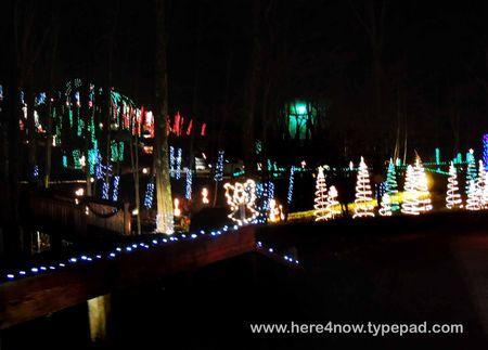Christmas Lights_0020