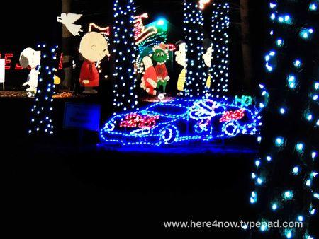 Christmas Lights_0035