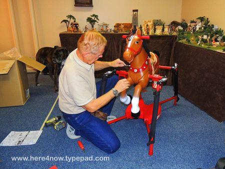 Rocking Horse_0050