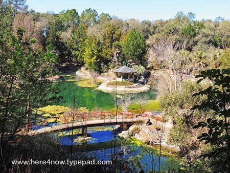Cedar Lakes Gardens_0018