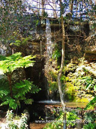 Cedar Lakes Gardens_0041