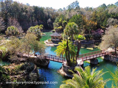 Cedar Lakes Gardens_0047