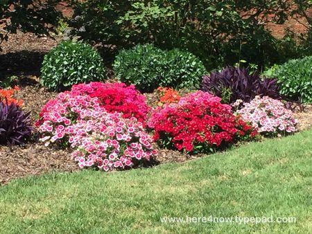 SC Botanical Garden_05