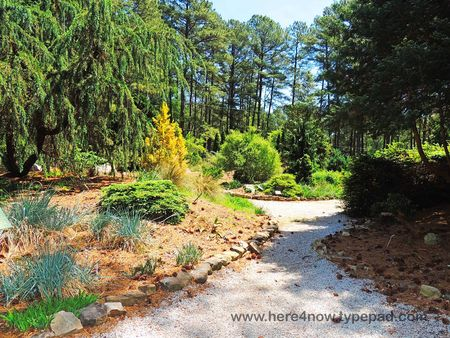 SC Botanical Garden_0036