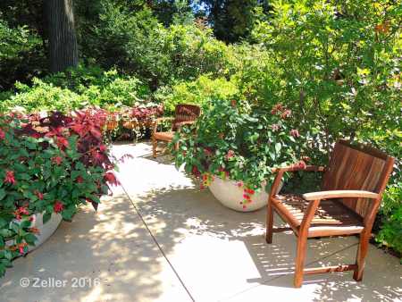 Cleveland Botanical Gardens_0005