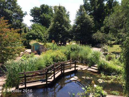 Cleveland Botanical Garden_30