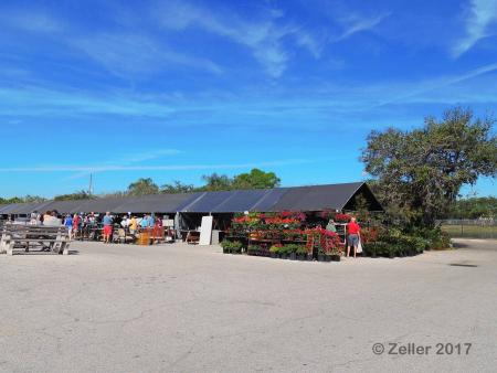 Red Barn Flea Market_0006