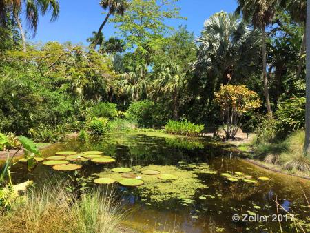 McKee Botanical Garden_P31