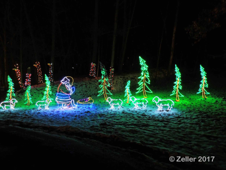 Christmas Lights_0072-b