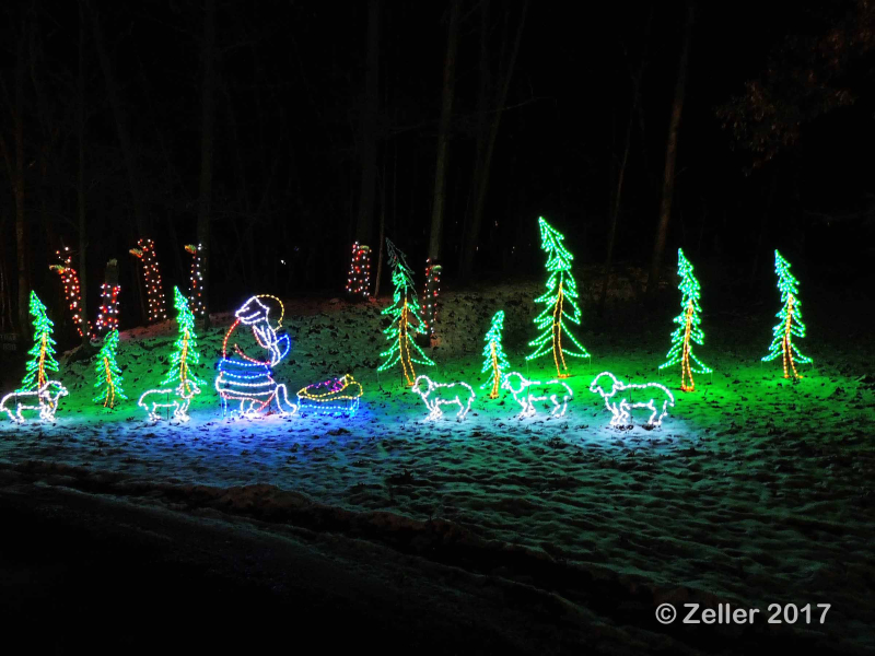 Christmas Lights_0074