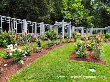 Inniswood Gardens_0050