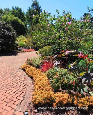 Kingwood Gardens_0011