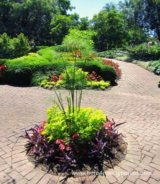 Kingwood Gardens M_0089