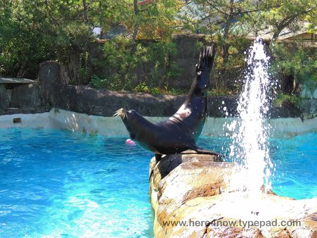 Pittsburgh Zoo_0065