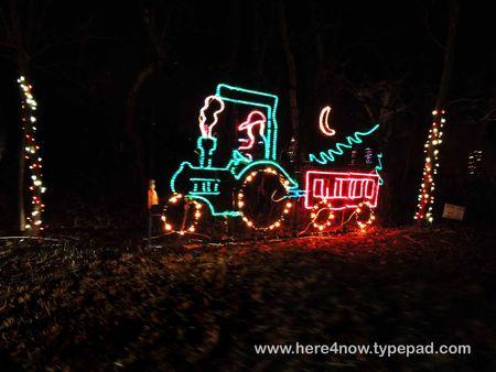 Christmas Lights_0016
