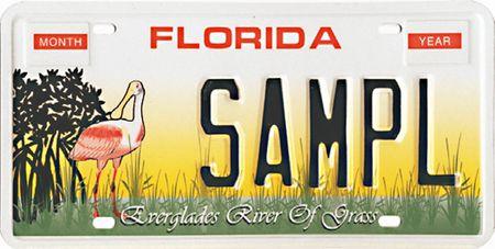 Everglades Plate