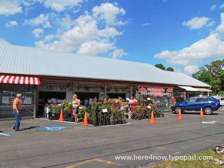 Parksdale Market_0061
