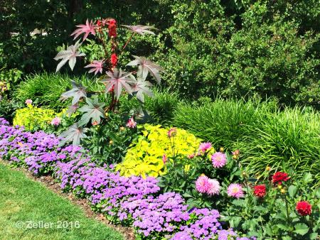 Kingwood Gardens_07