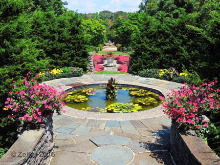 Kingwood Gardens_0024