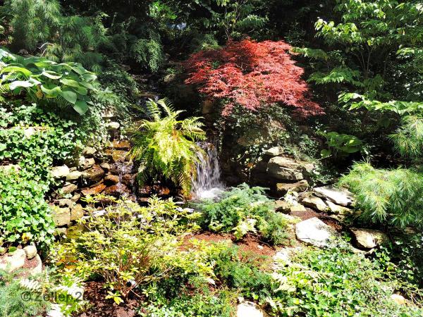Living our dream cleveland botanical garden for Cleveland botanical gardens parking