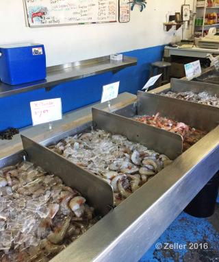 Aquila Seafood_01