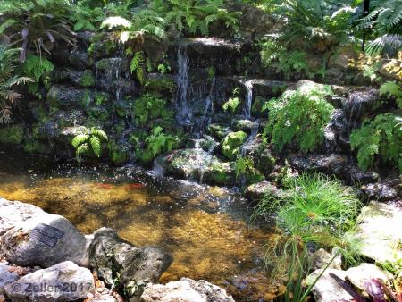 McKee Botanical Garden_iPad30