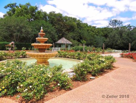 Leu Gardens_0035