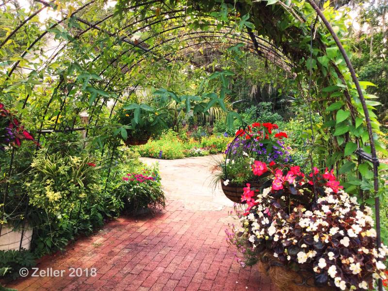 Leu Gardens_15