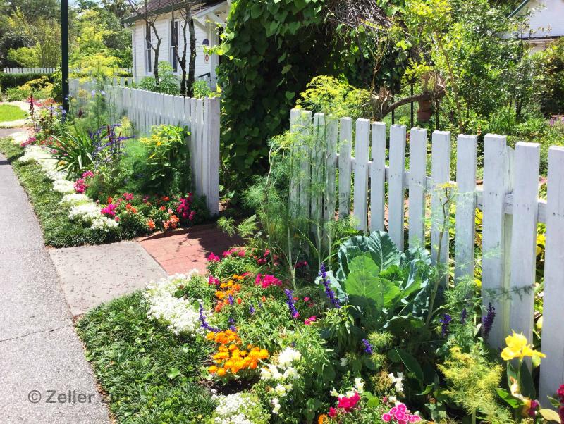 Leu Gardens_24