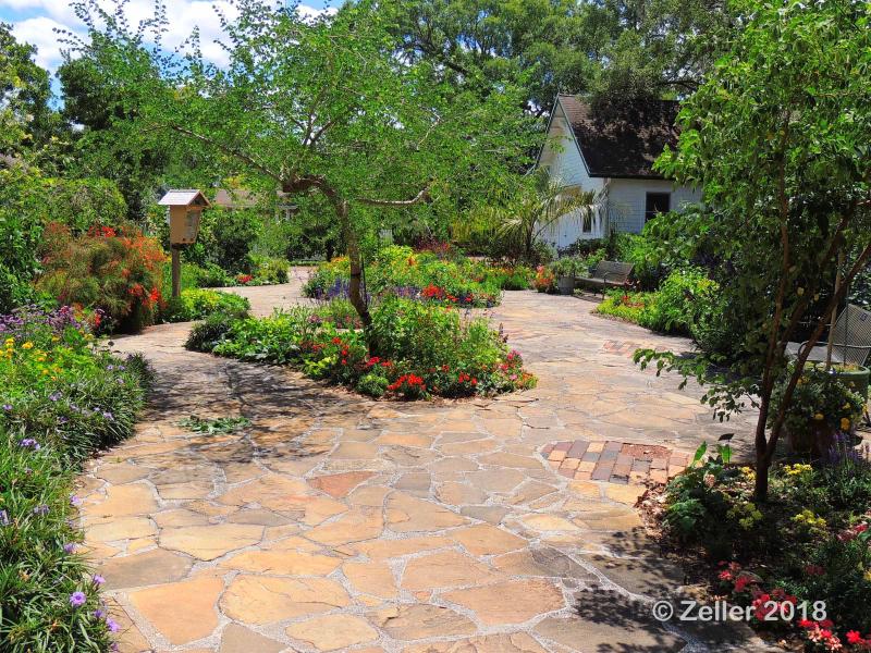 Leu Gardens_0032