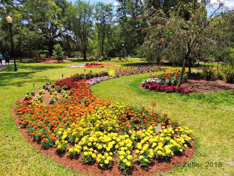 Leu Gardens_0043