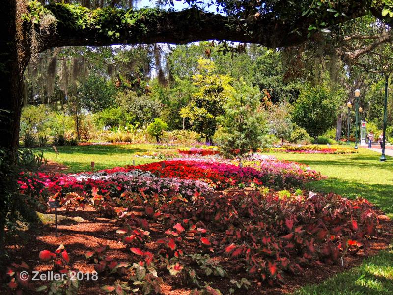 Leu Gardens_0041