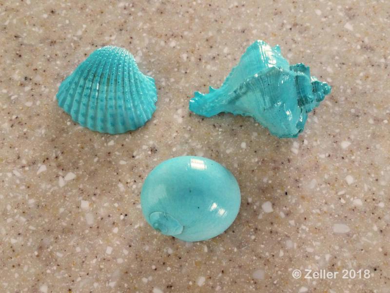 Spray Painted Shells_013