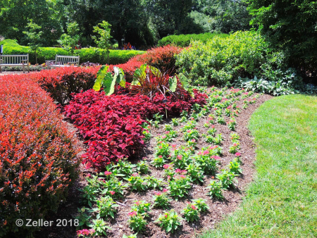 Kingwood Gardens_0004