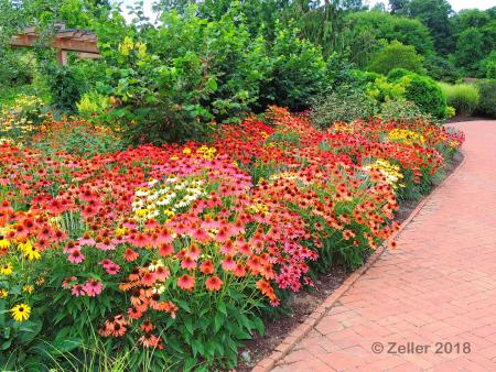 Kingwood Gardens_0056