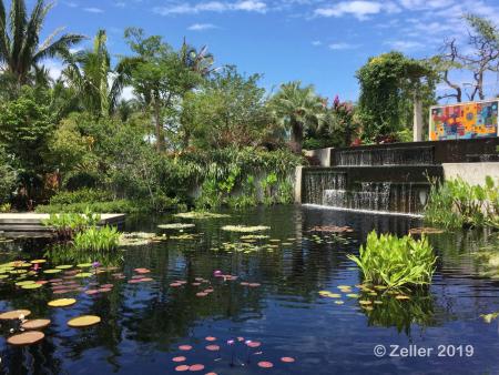 Naples Botanical Gaerden_33