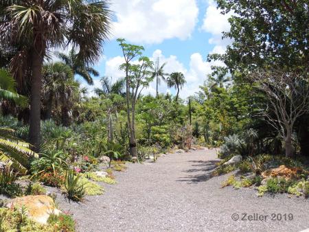 Naples Botanical Garden_0040