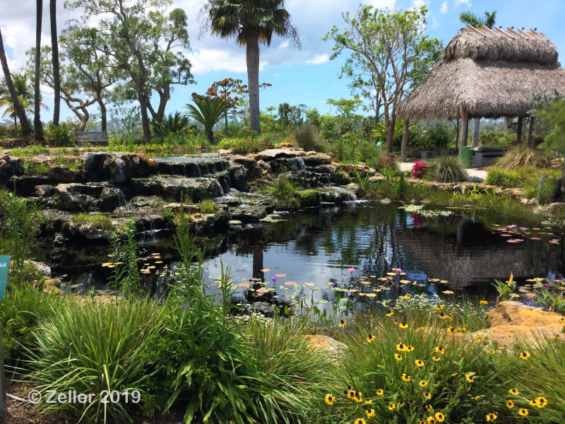 Naples Botanical Gaerden_44