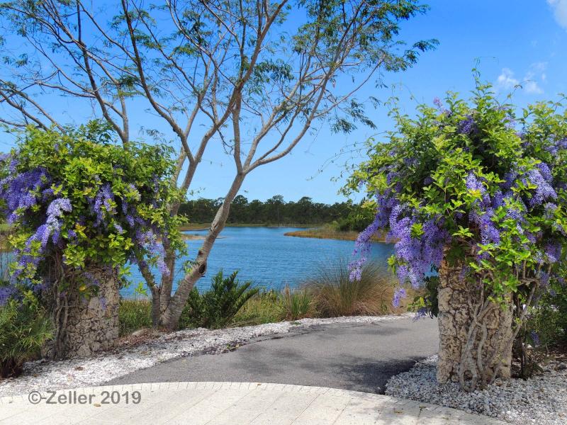 Naples Botanical Garden_0035