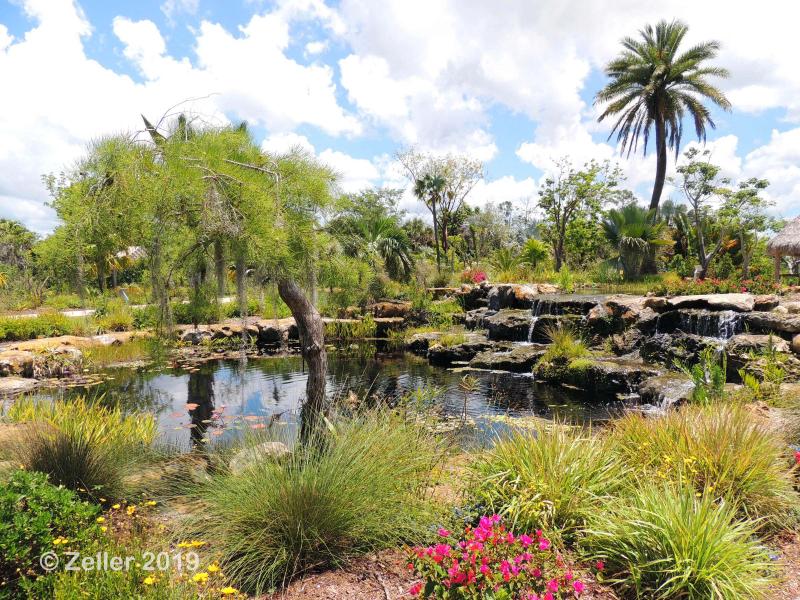 Naples Botanical Garden_0042