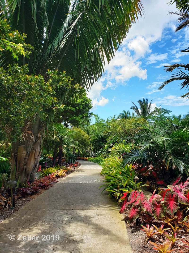 Naples Botanical Garden_005