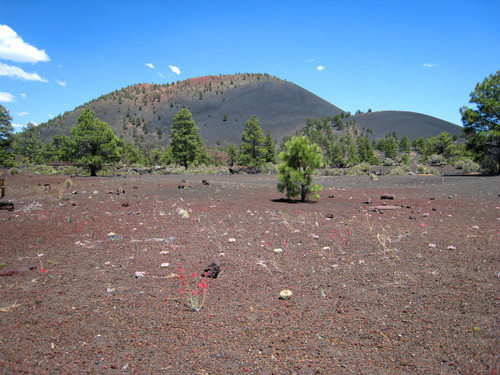 L.  Sunset Crater