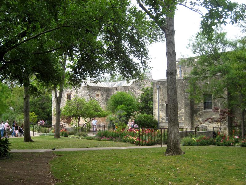 Alamo_6_copy