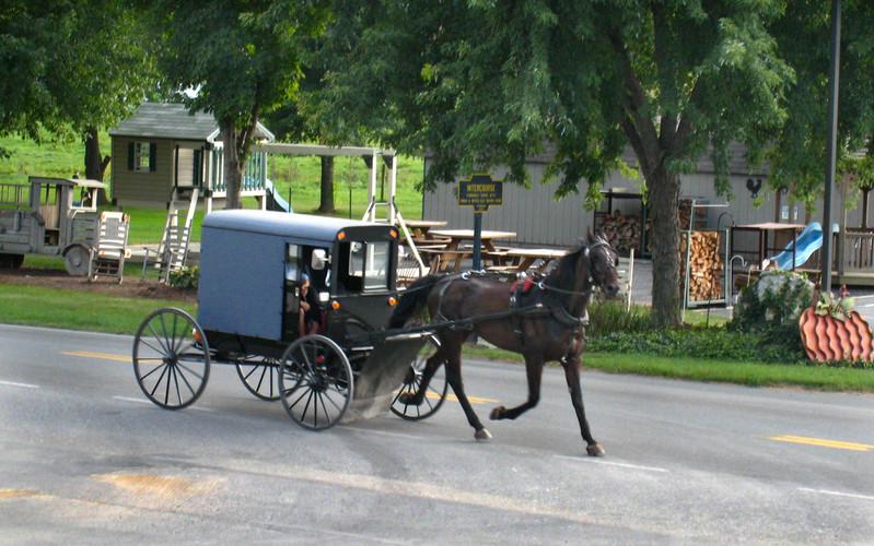 Amish002_copy