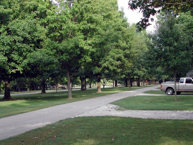 Lincoln_trails3